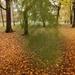 Bús őszi szél