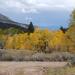 US 2010 Day27  015 Great Basin NP, NV