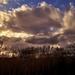 Felhők a nádas felett