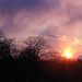 Márciusi naplemente