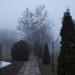 Télvégi köd, út a Balatonpartra