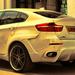 BMW X6 Schnitzer 5