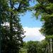 erdő05m