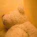 Ottó a dagadt medve