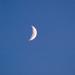 Hold még világosban