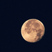 Hold, kemény búcsúzás